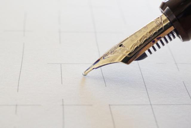 パイロットカスタム823 万年筆 B