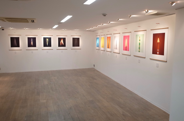 ポールスミス 鉛筆展 THE SECRET LIFE OF THE PENCIL