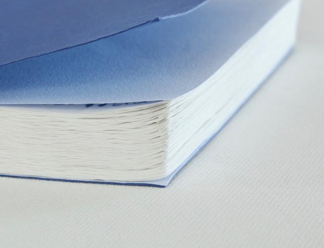 ドレスコ オニオンスキンノートブック